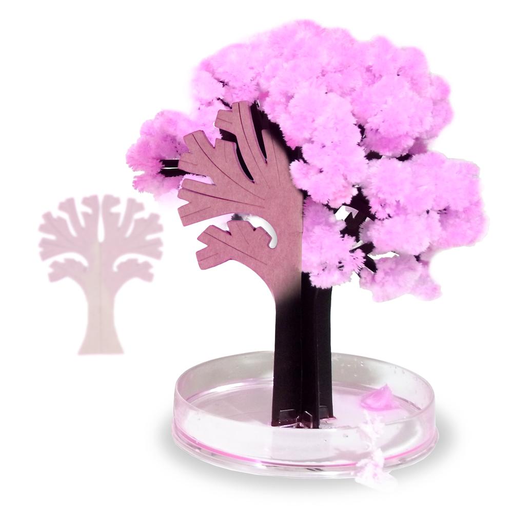 Miniaturbaum Magic Sacura
