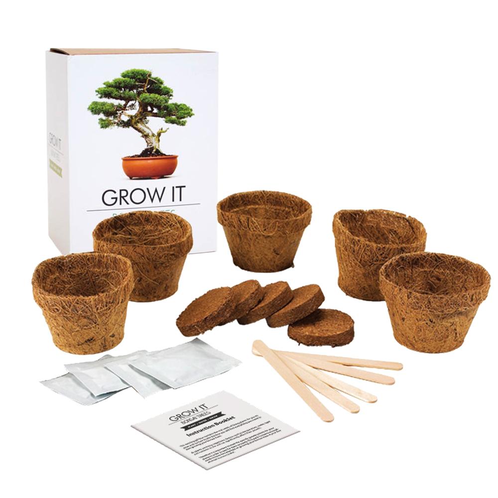 Bonsai Bäume selber pflanzen Set