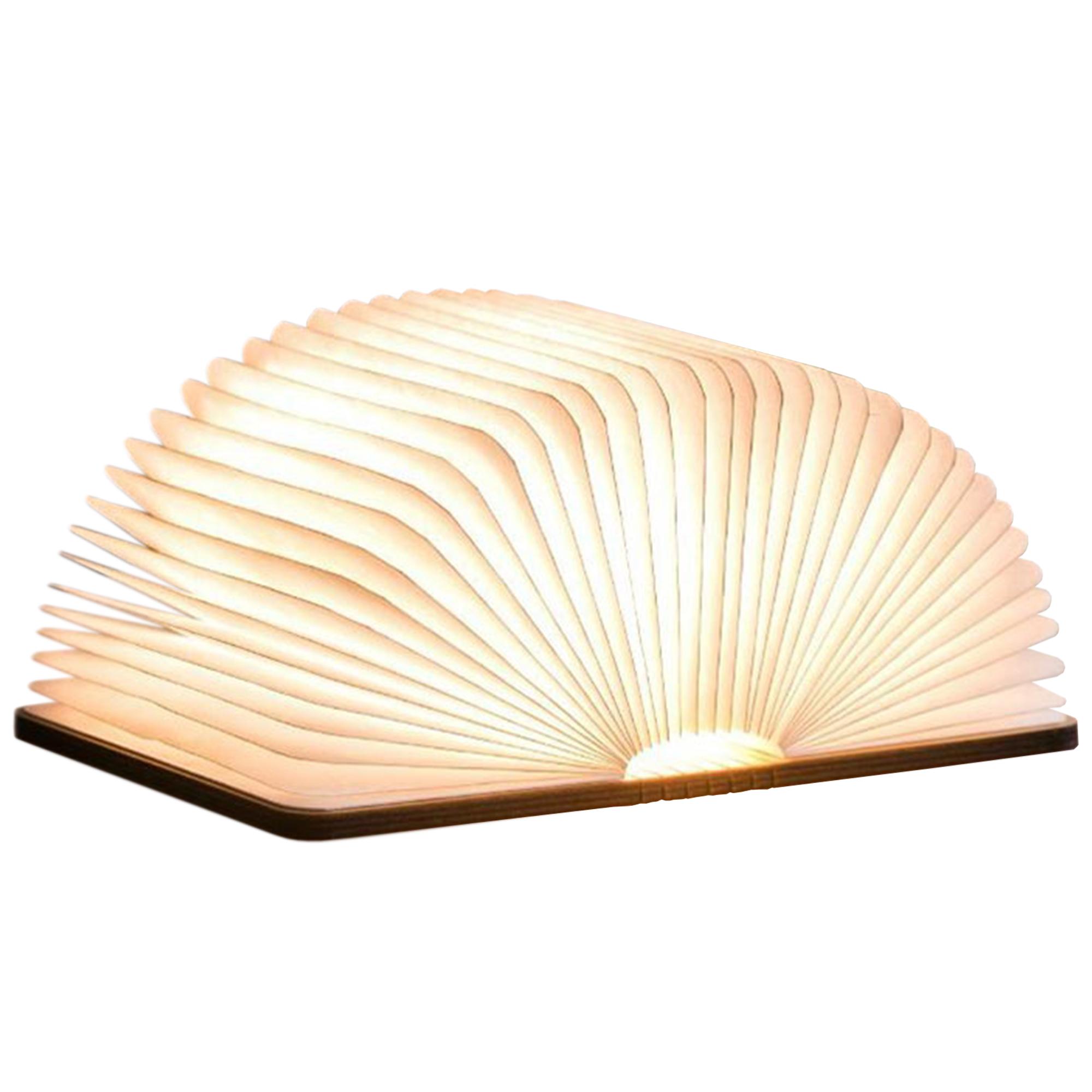 LED Lampe Buch