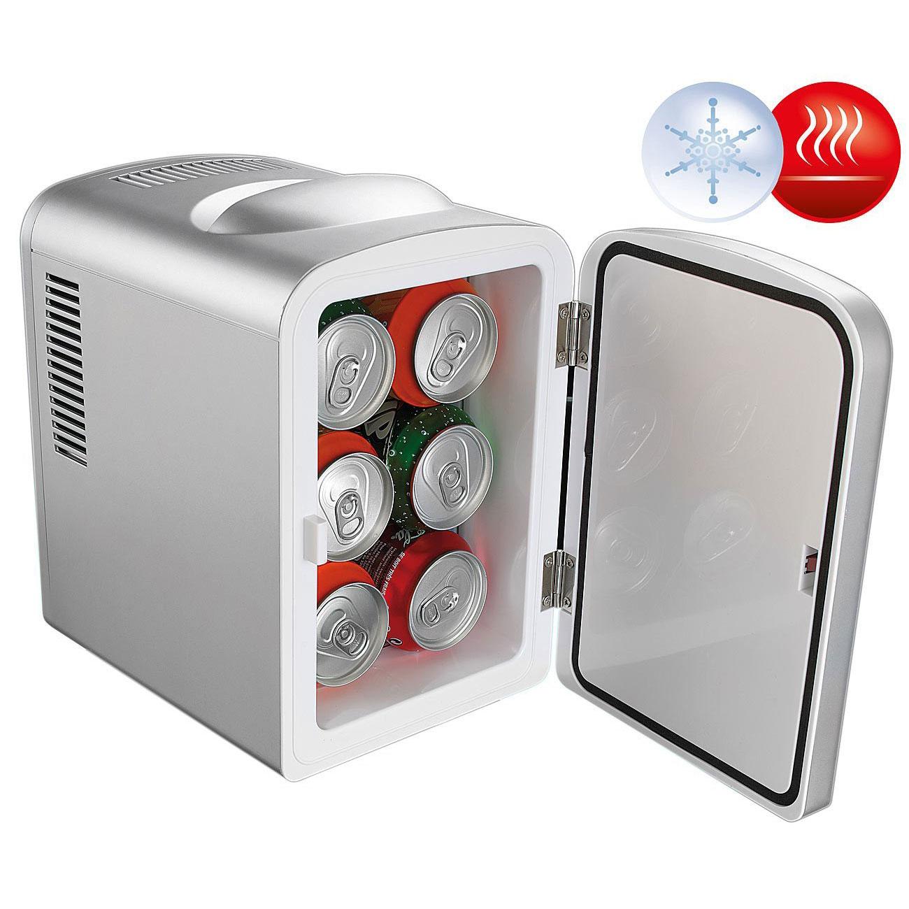 Kleiner Kühlschrank für 12/230 V