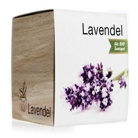 Eco Holzwürfel Lavendel