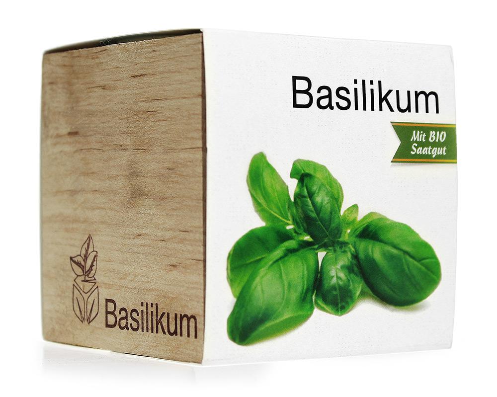 Eco Holzwürfel Basilikum