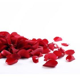 Dekorative Rosenblätter